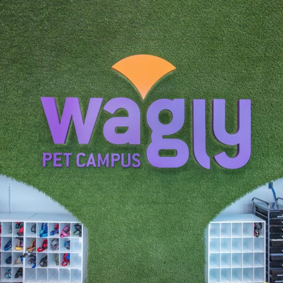 The veterinarians at Wagly Veterinary Hospital and Pet Campus.