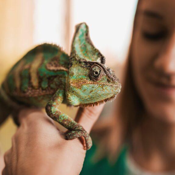 A woman holds a lizard.